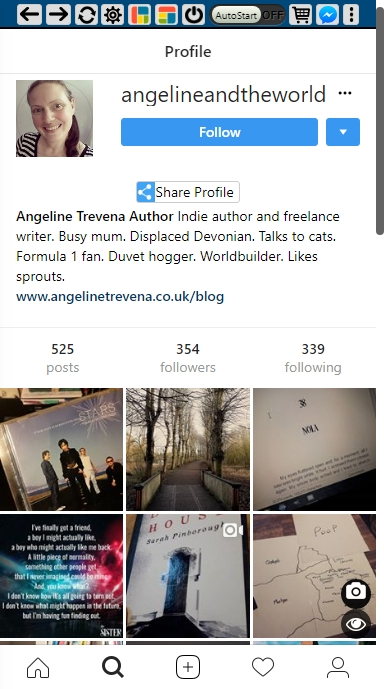 @angelineandtheworld Instagram profile shot